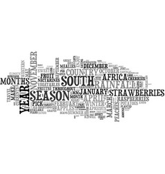 what s in season in south africa text word cloud vector image vector image