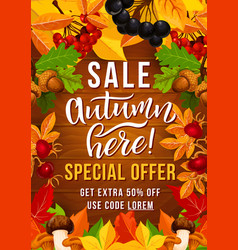 autumn sale offer poster with fall season leaf vector image