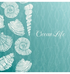 background with sea shells vector image