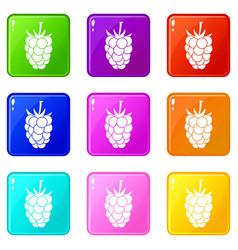 blackberry fruit icons 9 set vector image