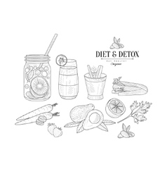 Fruit And Vegetables Diet Hand Drawn Realistic vector