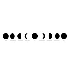 Moon phases isolated moons from young to old vector