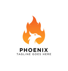 Phoenix logo design inspiration vector