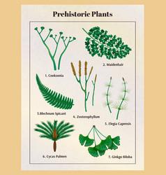 Prehistoric plants botanical set vector