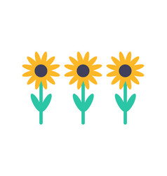 sunflower set front view isolated icon vector image