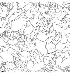 vintage pattern with peonies tulips silhouette vector image