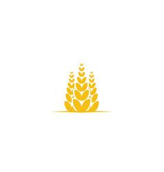 wheat grain agriculture logo designs inspiration vector image