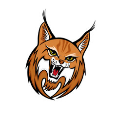 Angry lynx sign vector