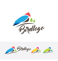 Bird logo design vector
