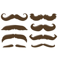 Different style of mustache in brown color vector