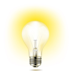 Light bulb yellow vector