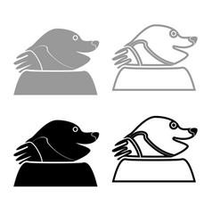 mole icon for garden craftset grey black color vector image