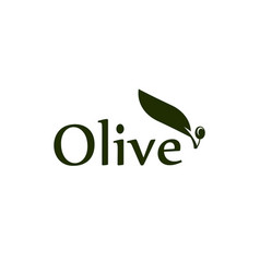 olive tree leaf branch and fruit logo vector image