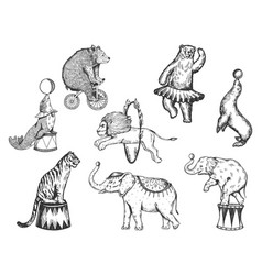 retro circus animals performance set sketch vector image