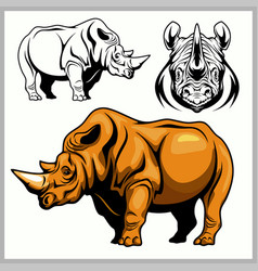 Rhinoceros in a profile and front view vector