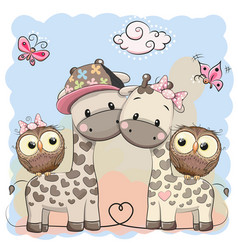 two cute giraffes and owls vector image