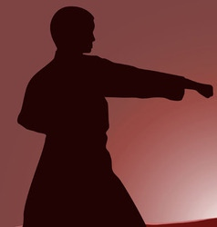Two men are engaged in karate at sunset the sun vector image