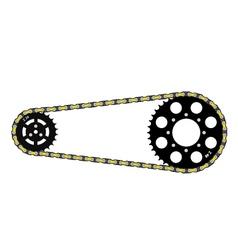 Chain drive vector