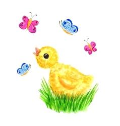 Chicken and butterflies vector image vector image