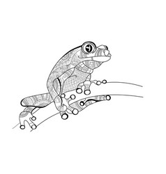 frog on the branch doodle for coloring vector image