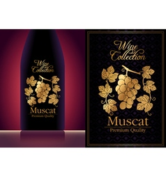 wine label template vector image