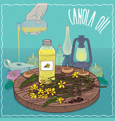 Canola oil used as fuel for oil lamp vector