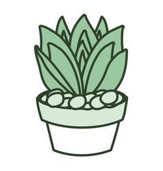 Cartoon cactus in a pot vector