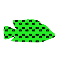 fish silhouette on a green background with cameras vector image
