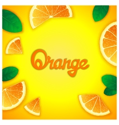 Fruity orange background vector