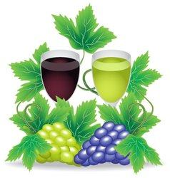 glasses of red and white wine grapes on the vector image