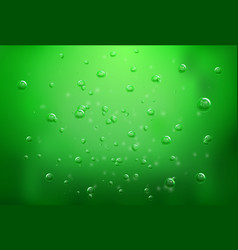 Soap water bubbles transparent isolated realistic vector