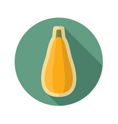 Zucchini flat icon vegetable vector