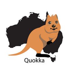 quokka animall of australia vector image vector image