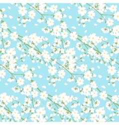 white spring tree flowers vector image vector image