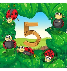 Number five with five ladybugs on leaves vector image vector image