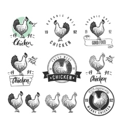 Chicken product logotypes set Hen meat and eggs vector image vector image