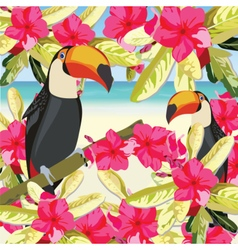 Exotic tropical card with toucan vector