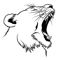 Lioness Head vector