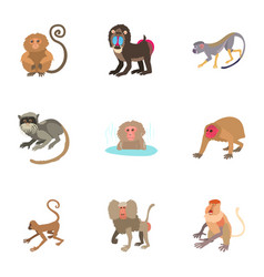 monkey icons set cartoon style vector image
