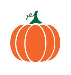 pumpkin with swirls vector image