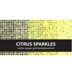 square pattern set citrus sparkles seamless vector image