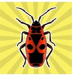 Insect anatomy Sticker Pyrrhocoris apterus vector image vector image