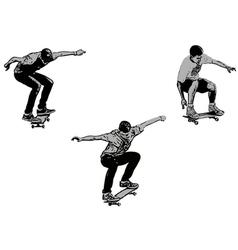 skateboarders vector image