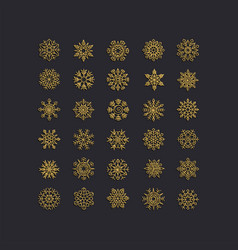 Golden snowflakes icon on black background vector