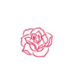 abstract rose flower logo designs inspiration vector image