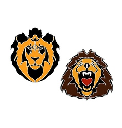 Cartoon lions head vector image