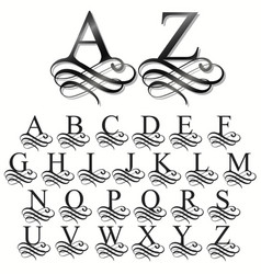 curly font calligraphic alphabet original typeface vector image