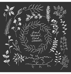 Hand sketched floral elements vector image