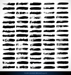 75 DRY GRUNGE BRUSHES vector image