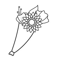 bouquet flowers ornament vector image